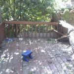 dh's deck