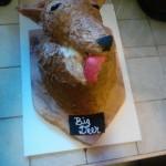 hayley cakes 2