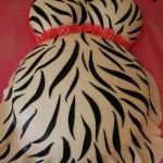 hayley cakes 6