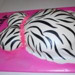 hayley cakes 7